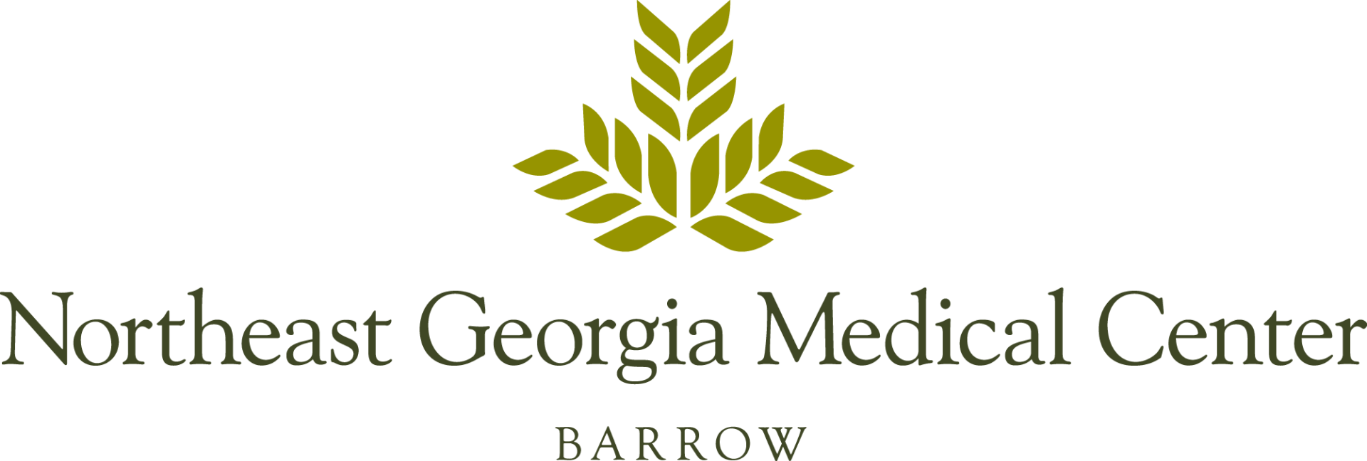 NGMC-logo-barrow-color-outlined